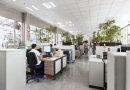 Jakie powinno być prawidłowe oświetlenie w biurze?