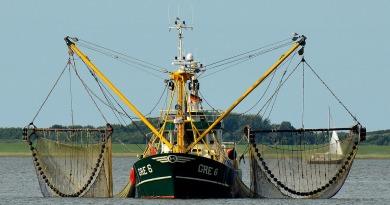 Praca na łodzi rybackiej – jakie są zarobki? Kto nadaje się do takiego zawodu?
