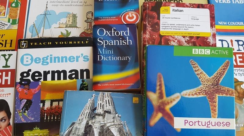 Słowniki języków wykorzystywanych w Europie