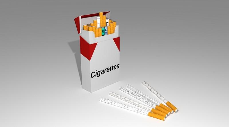 polska praca tyton